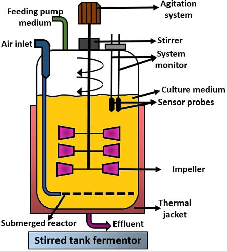 Bioreactor parts and their functions pdf